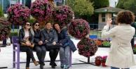 Antalya#039;nın en güzel ağacı seçiliyor