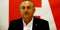 Çavuşoğlu Alman gazetelerine yüklendi