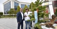 İşte Antalya#039;nın en güzel ağacı