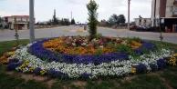 Şehir çiçeklerle donatıldı