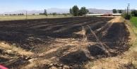 12 dönüm tarım arazisi yanarak küle döndü