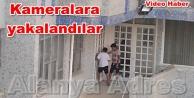 Alanya#039;da minik hırsızlar iş başında