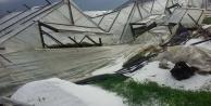 Kısa süreli yağış Alanya#039;da seraları vurdu