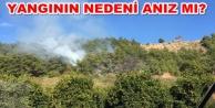 Alanya Dimçayı#039;nda yangın paniği