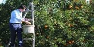 #039;Yerli malı tüketmek; milli ekonomimize destektir#039;