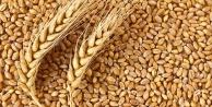 Antalyada buğday alım fiyatını açıkladı