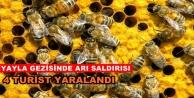 Alanya#039;da turistlere arı saldırısı