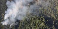 Alanya#039;da korkutan orman yangını