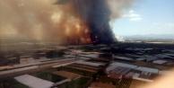 Antalya#039;da orman yangını