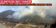 Alanya#039;daki orman yangını kontrol altına alındı