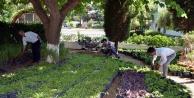 Büyükşehir#039;den Alanya#039;daki mezarlıklara yoğun bakım