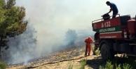 Komşuda orman yangını