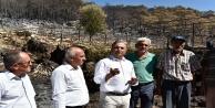 70 hektar orman, 100 dönüm sera zarar gördü
