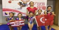 Minik jimnastikçiler Saraybosnadan madalyayla döndü