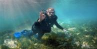 Vali, Alanya'da denizin altından mesaj verdi
