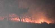 Komşuda orman yangını  korkuttu