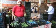 Alanya Rusya ve Ukrayna#039;ya avokado yetiştiremiyor