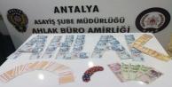 Antalya#039;da kumar operasyonu
