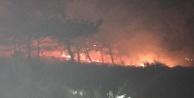 Gazipaşa#039;da yangın paniği