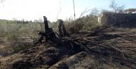 Komşuda 8,5 hektar alan yandı