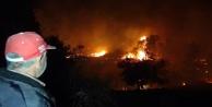 Yangında 10 hektarın üzerinde alan zarar gördü