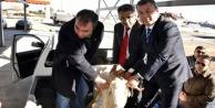 Genç çiftçiler koyunlarını teslim aldı