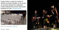 Grinko konserinde plastik sandalye şoku