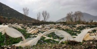 Alanya ve Gazipaşa'da fırtına seraları vurdu!