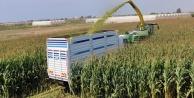ANTBİRLİKTEN çiftçiye satış garantisi
