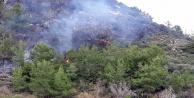 Yangında muz seraları son anda kurtarıldı