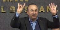 Çavuşoğlu#039;ndan Avrupa#039;ya #039;Bozkurt#039; ve #039;Rabia#039;lı yanıt
