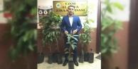 Alanya Ziraat Odası mango fidanı satacak