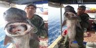 Balıkçı 1 metre uzunluğunda dev sardalya yakaladı