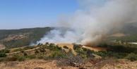 Alanya#039;da 100 dönümlük makilik ve ormanlık alan kül oldu