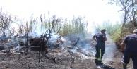 Antalyada ot çalı yangını