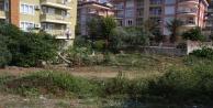 Başkan Yücel#039;den Fığla Mahallesi#039;ne park müjdesi
