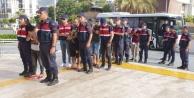 Alanyada fuhuş operasyonuna 5 tutuklama