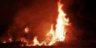 Alanyada ağaçlık alanda yangın paniği