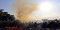 Seraları tehdit eden sazlık yangını korkuttu