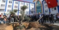 Bakan Çavuşoğlu Alanya#039;da #039;Geleceğe Nefes#039; için ağaç dikti