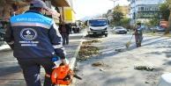 Alanya#039;da fırtına sonrası temizlik