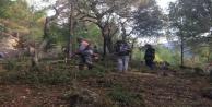 Alanyadaki mezarlıklarda 86 kişilik ekiple temizlik