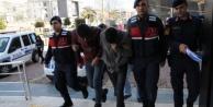 Alanya#039;da 10 ton muz çaldığı iddiasıyla yakalanan şüpheliler serbest!