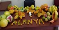 Alanya#039;da 38 tropikal meyve ve sebze yetiştiriliyor