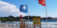 Türkiye#039;de en çok mavi bayağa sahip il Antalya!