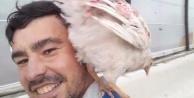 Tavuk hobisi ölümüne sebep oldu