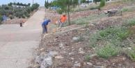 Büyükşehirden mezarlıklarda temizlik
