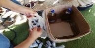 Antalyada 2 bin 500 litre sahte içki ele geçirildi