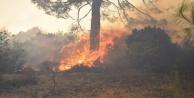 Tatil merkezi Adrasan#039;da 60 hektarlık ormanlık alan zarar gördü