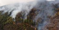 Anamur#039;da orman yangını! Alanya yolu kapatıldı